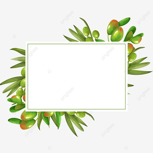 creative olive square border