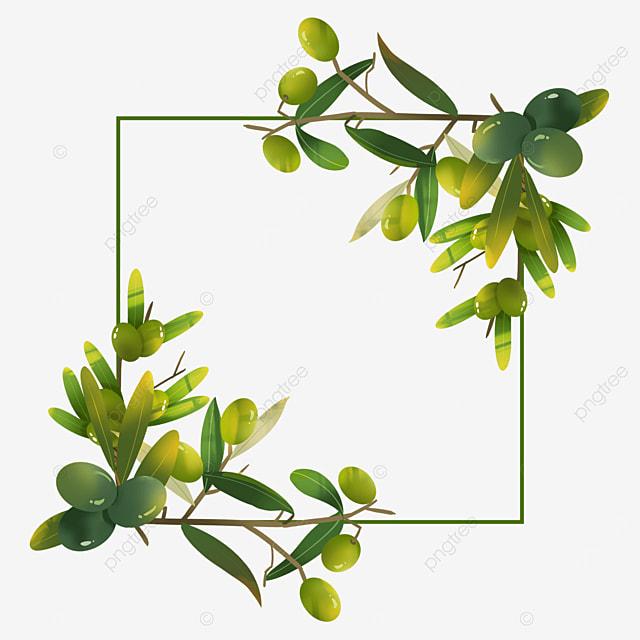 creative olive wire frame border