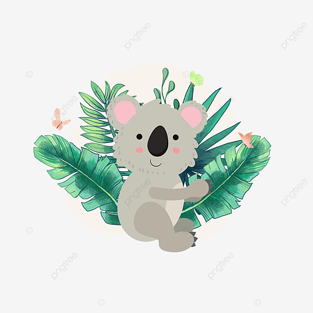 cute koala animal in summer