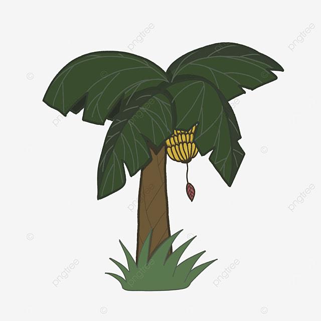 dark green banana tree clip art