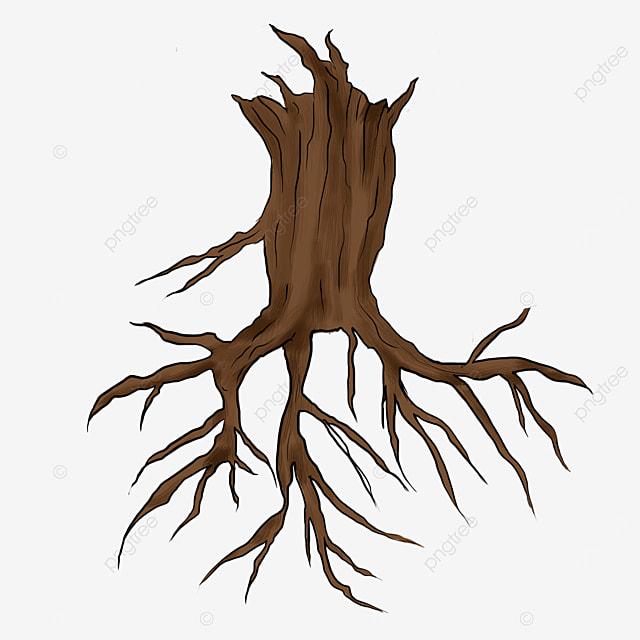 dry tree roots clip art