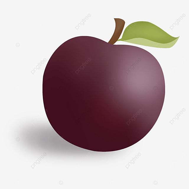 fuchsia round plums clip art