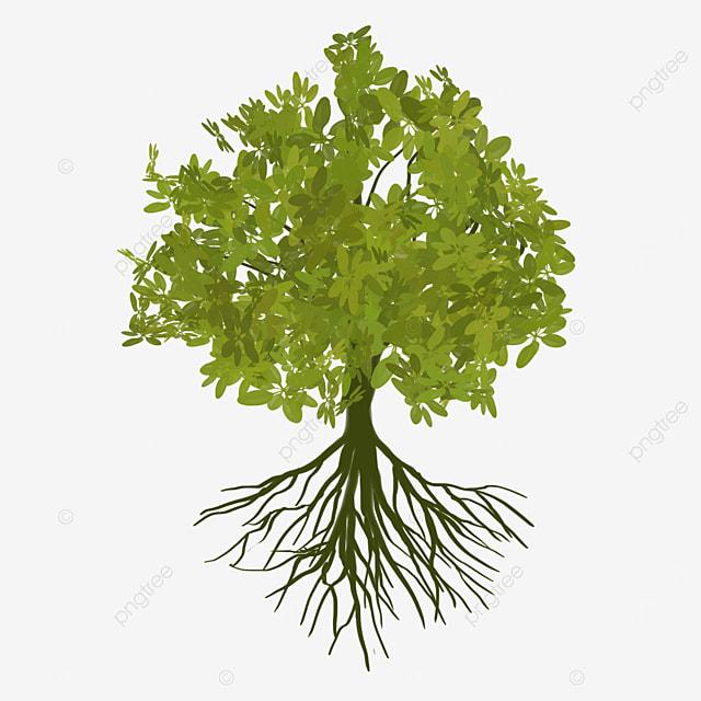 green big tree root clip art