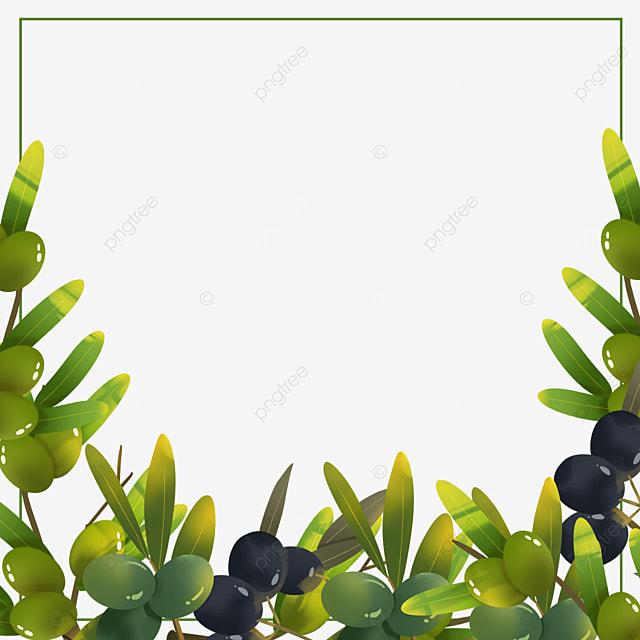 green olive creative border
