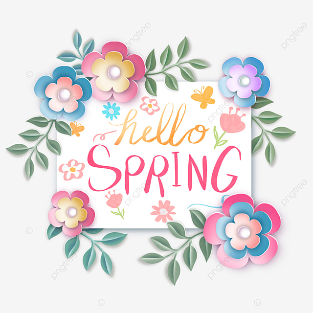hello spring flower text creative