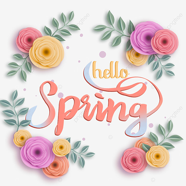 hello spring rose flower text