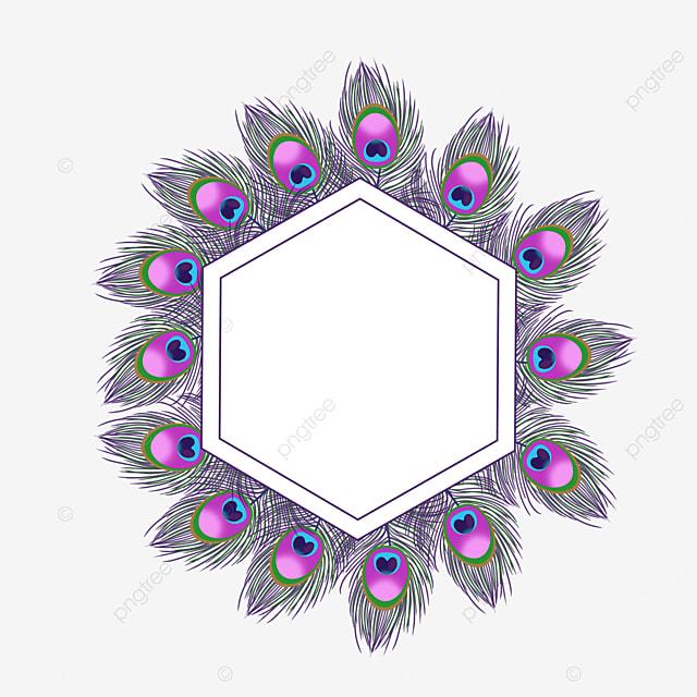 hexagonal purple feather border