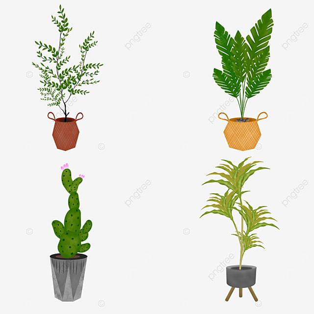 houseplant pot