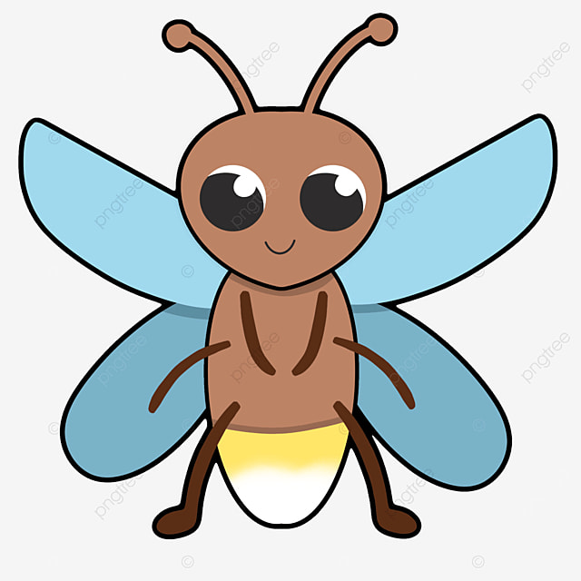 insect firefly clip art