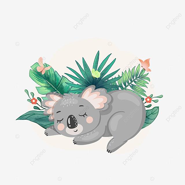 koala sleeping summer animal clipart