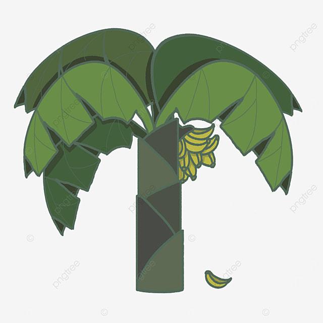 leafy banana tree clip art