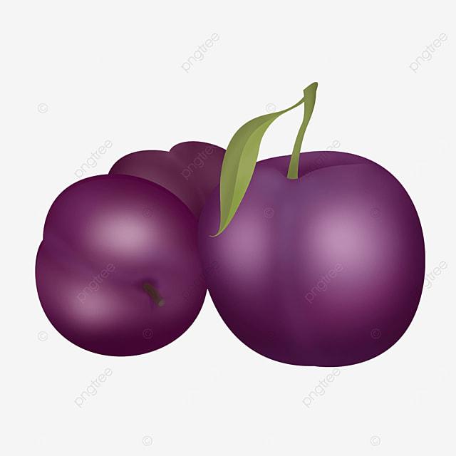 multiple combination purple plums clip art
