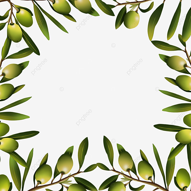 olive creative green branches and leaves border
