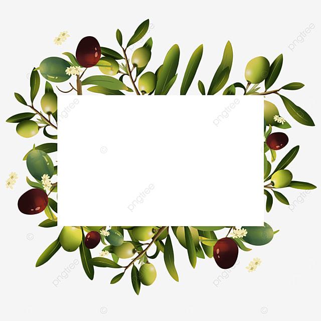 olive creative green leaf border
