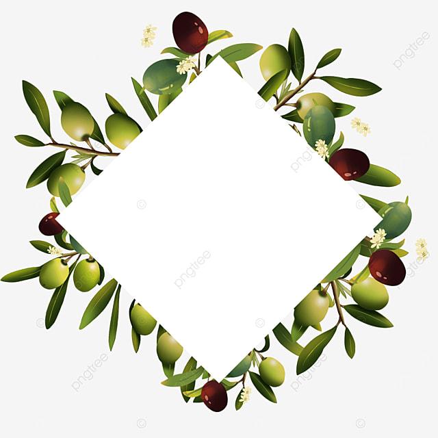olive square creative border