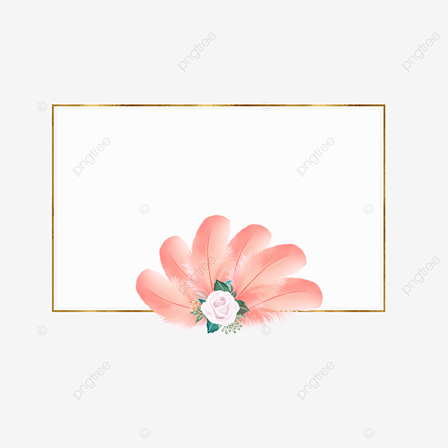 pink feather rectangle border