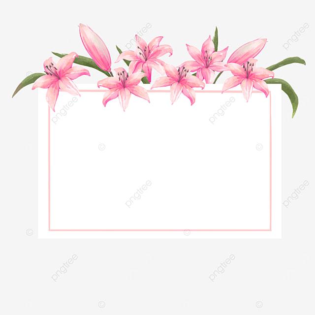 pink lilies wedding border buds