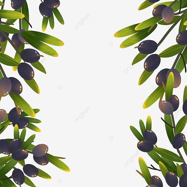 purple olive creative border