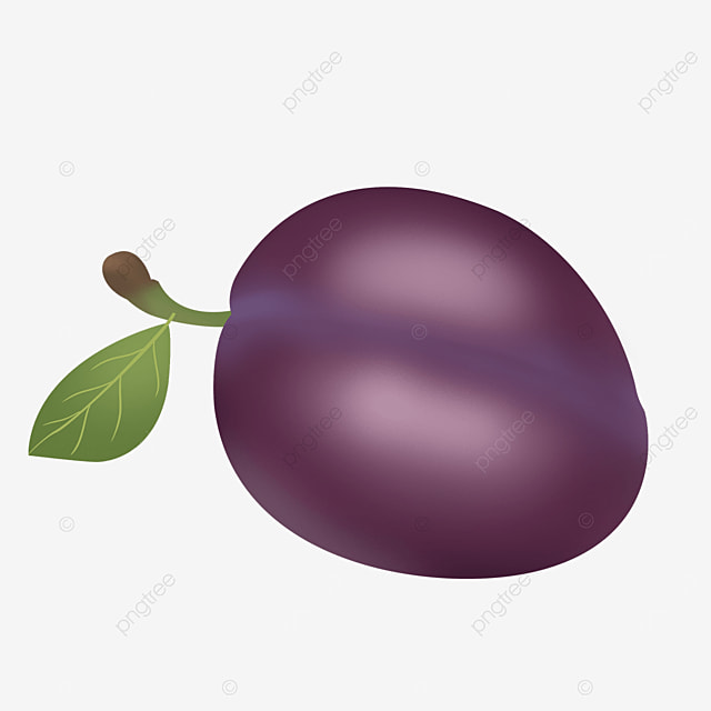 realistic purple conical plums clipart