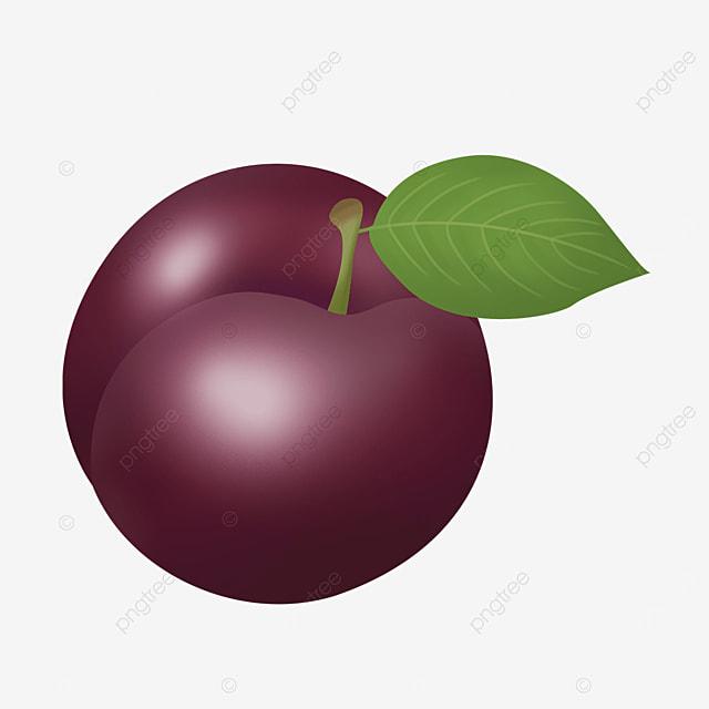 realistic round flat mauve plums clipart