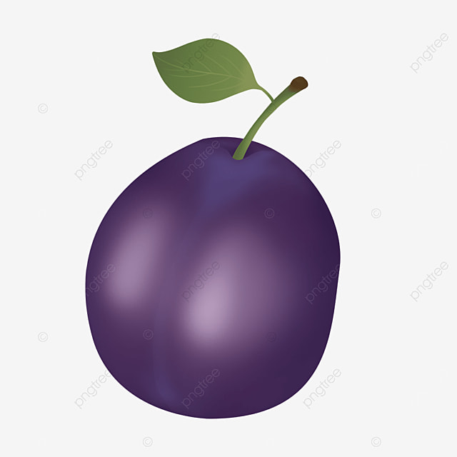 single dark purple plum with leaves clipart