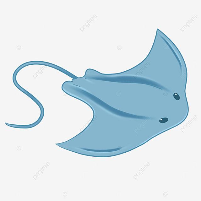 sky blue stingray clip art