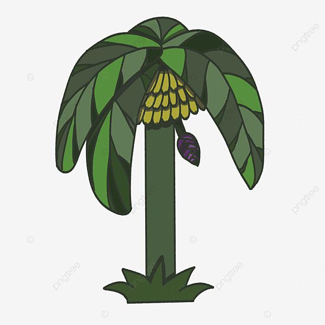 straight banana tree clip art