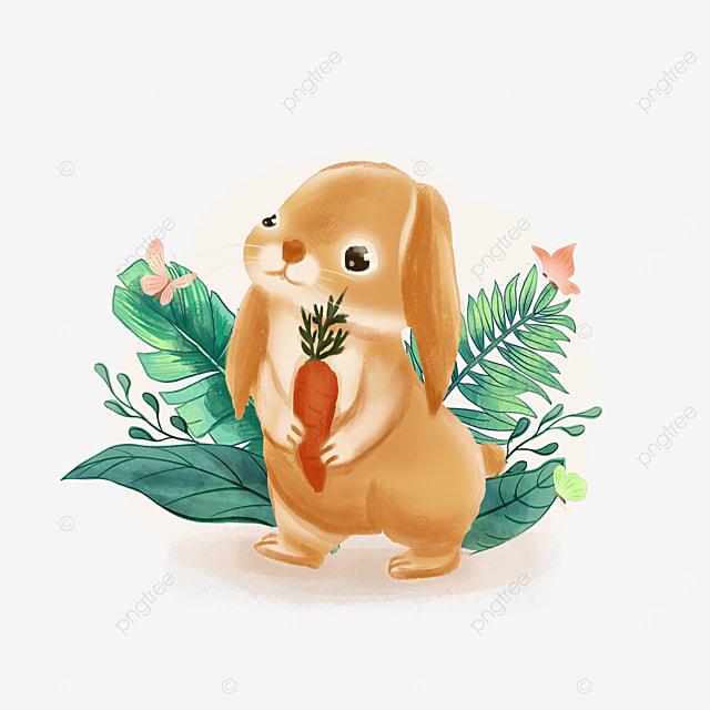 summer animal bunny clipart