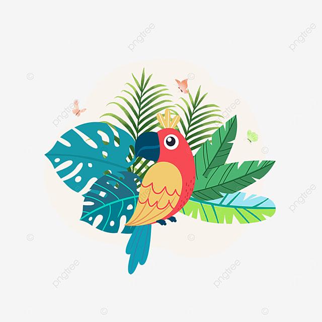 summer plant cartoon parrot animal