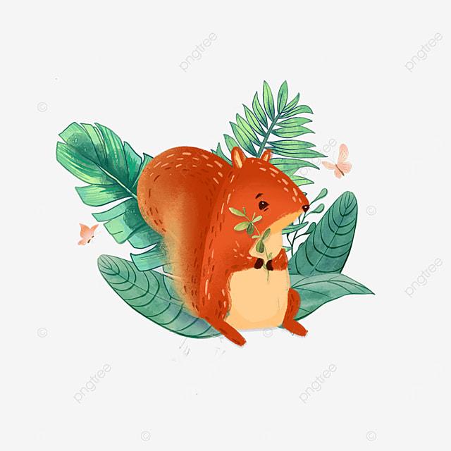 summer plant cute squirrel animal