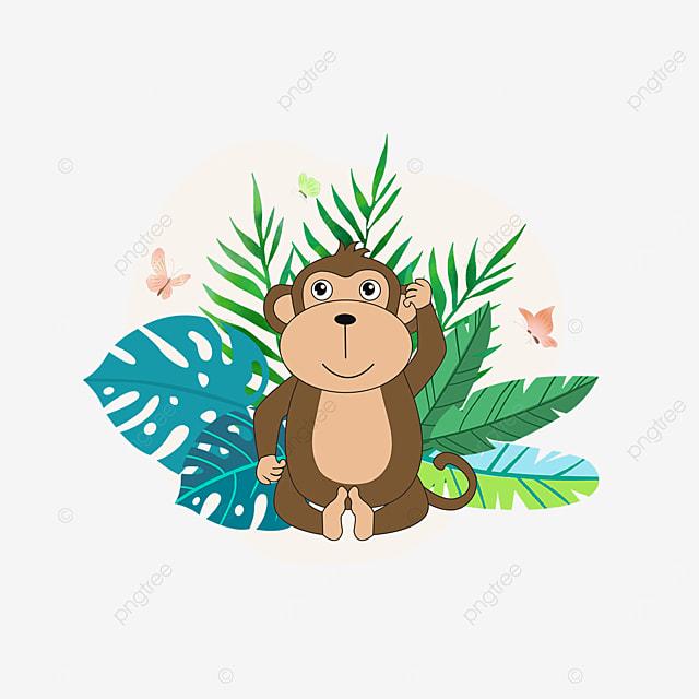 summer plant orangutan animal