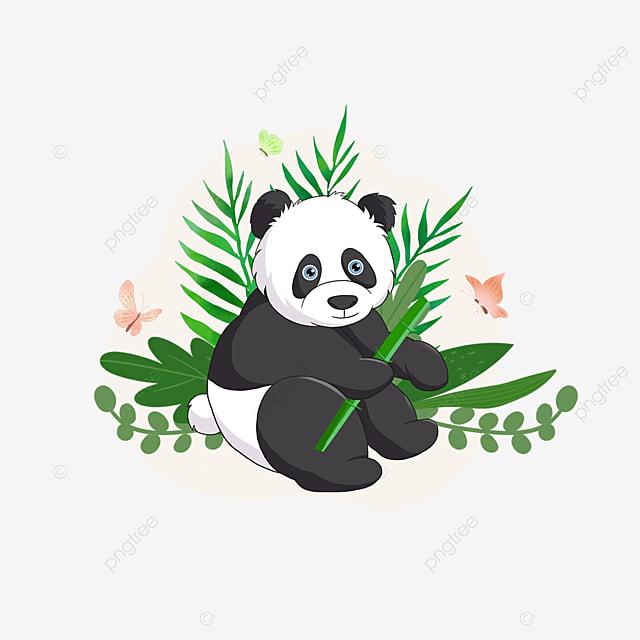 summer plant panda animal