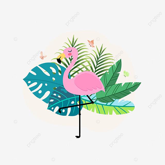 summer plant tropical flamingo animal