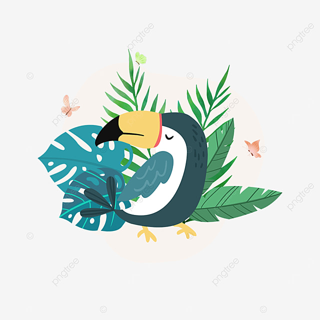 summer tropical plant parrot animal