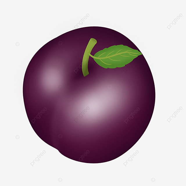 top view angle oblate dark purple plums clipart
