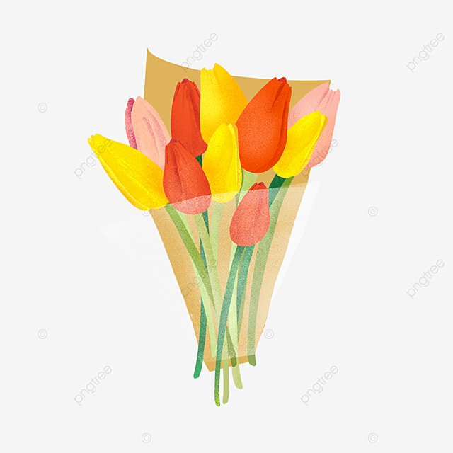yellow pink red tulip bouquet clipart