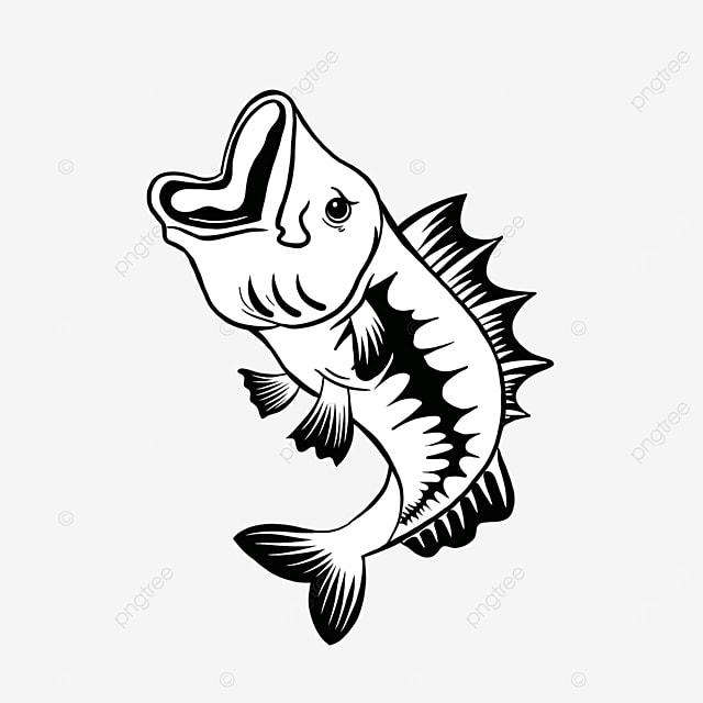 black and white bass clip art