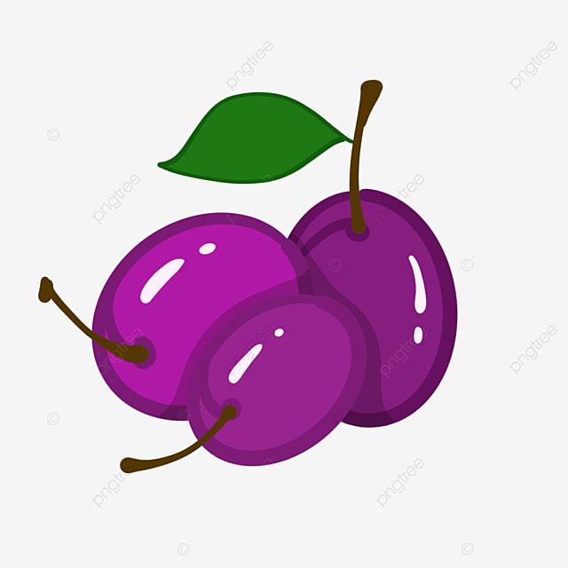 crisp plum clip art