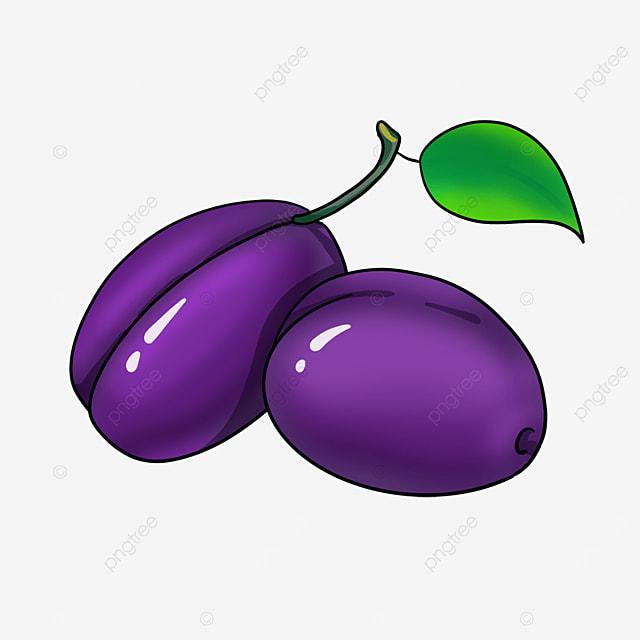 plump plums clipart