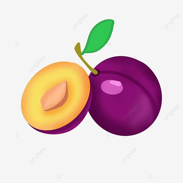 succulent plums clip art