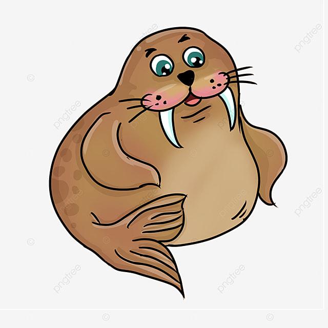 cute cartoon style fat cocktail brown walrus clipart