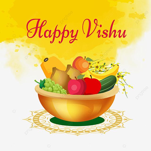 yellow blooming brush indian vishu fruit