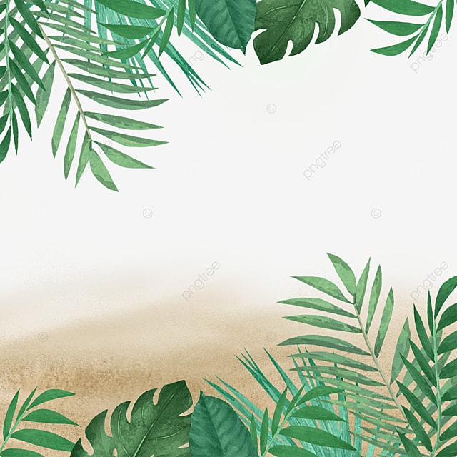 beach summer summer tropical green plants green leafy plants