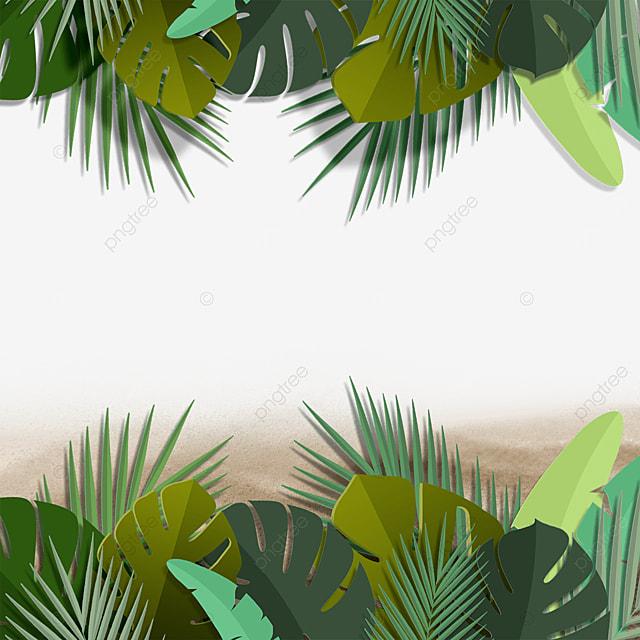 green plants summer summer beach