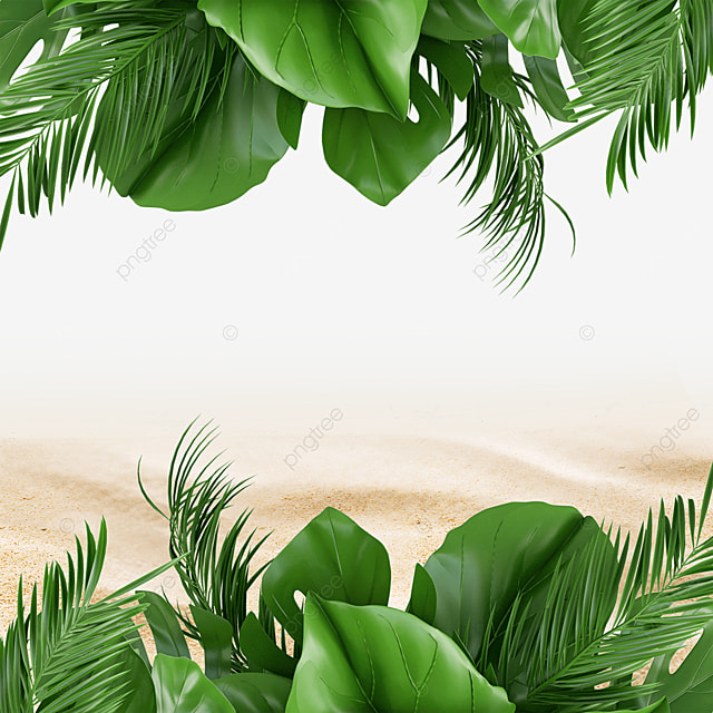 summer beach tropical background green plants