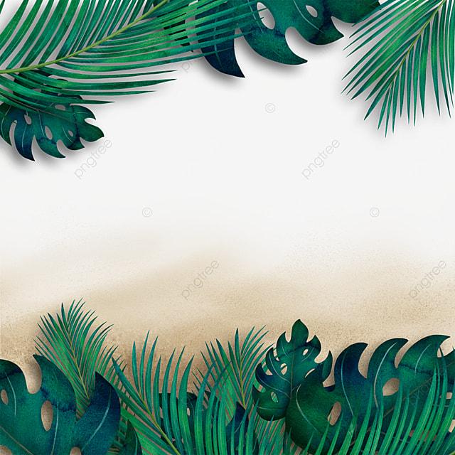 summer beach tropical plants summer green leaves green plants