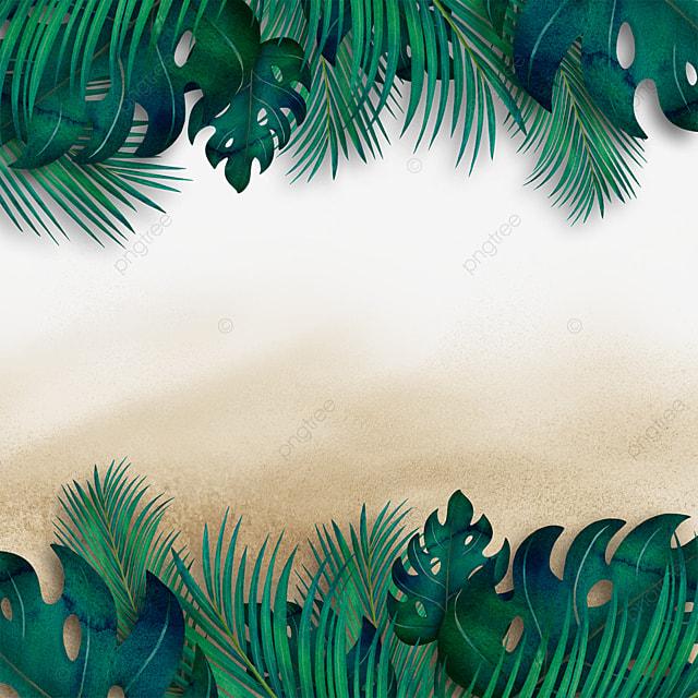 summer beach tropical plants summer green plants