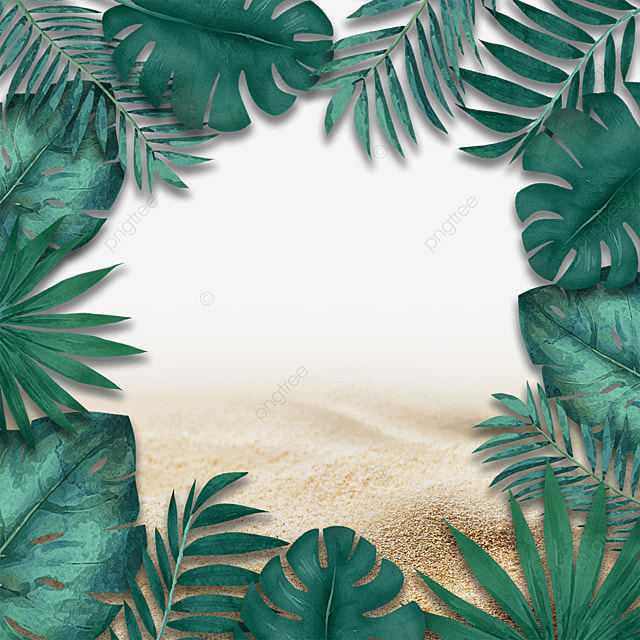 summer green plants tropical plants beach
