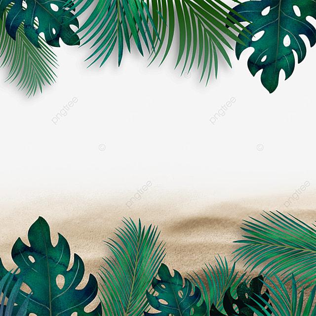 summer plants beach summer green leaves tropical green plants