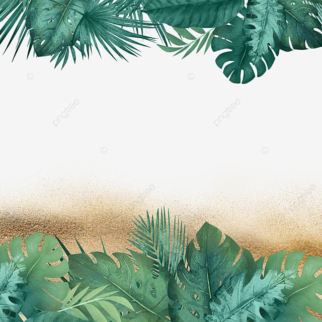 summer summer beach tropical green leafy plants